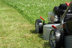 Silver lawn mower in the garden.